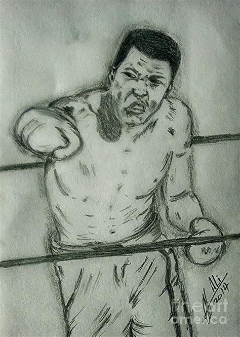 Pencil Alis muhammad ali drawing by collin a clarke