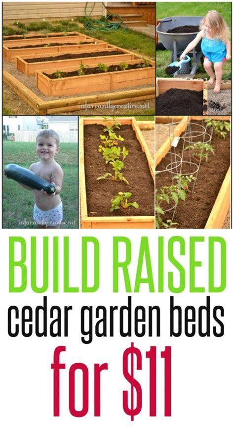 cheapest way to make raised garden bed raised bed gardening