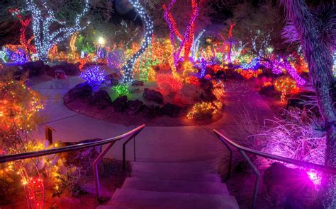 holiday lights and movie sites this nevada garden celebrates the holidays by wrapping