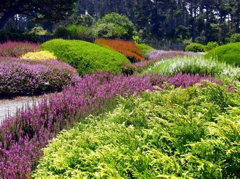 Mendocino Botanical Gardens Mendocino Coast Botanical Gardens Fort Bragg Ca On Tripadvisor Hours Address Top