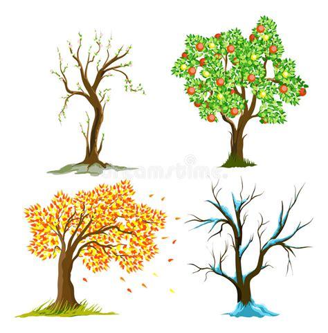 clipart alberi alberi nelle stagioni illustrazione vettoriale