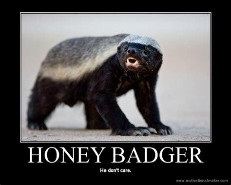 Honey Badger Don T Care Meme - 190 pounds of horsepower january 2012