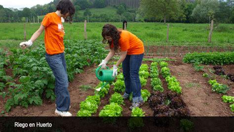imagenes regando jardines riego en huerto urbano consejos y agua