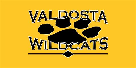 valdosta wildcats license plate car tag jodi s accessories