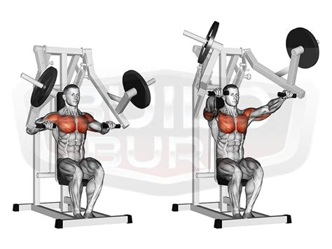 seated chest press vs bench press seated chest press machine