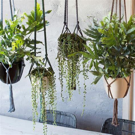 Ikea Kitchen Discount by 25 Beste Idee 235 N Over Hangplanten Op Pinterest