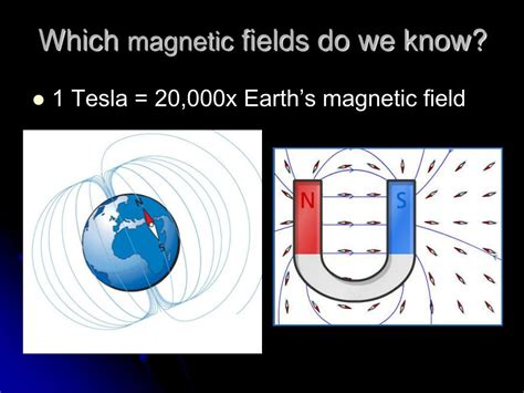 Earth Magnetic Field Tesla Ppt Basis Of The Bold Signal Powerpoint Presentation