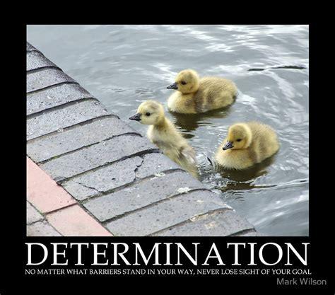 determination picture quotes determination sayings with determination quotes and sayings quotesgram