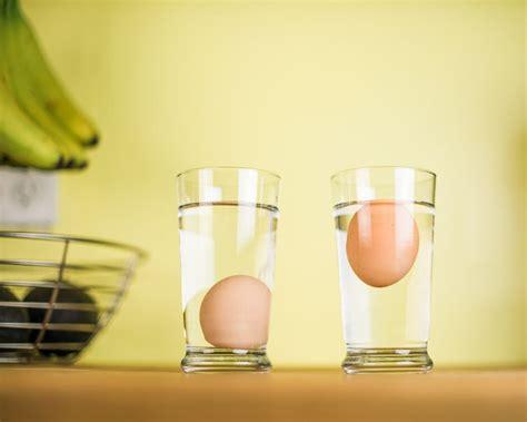 Do Eggs Float Or Sink do bad eggs float or sink someday i ll learn