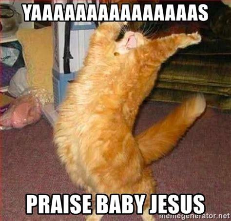 Praise Jesus Meme - diy cat costume related keywords diy cat costume long