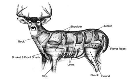 butchering a deer diagram processing ranchers deli and meats