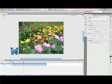 tutorial flash interactive flash cs5 tutorial creating an animated butterfly symbol