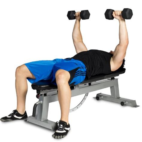 cap barbell deluxe utility bench cap barbell deluxe utility weight bench sports in the uae see prices reviews and