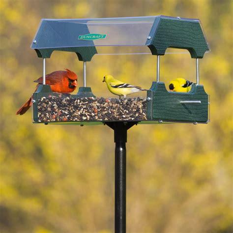 duncraft eco strong platform bird feeder ebay