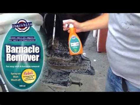 how to remove barnacles from fiberglass boat rust remover removes barnacle from motor boat marine life