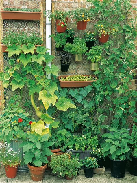 Vertical Garden How To How To Grow A Vertical Vegetable Garden How Tos Diy