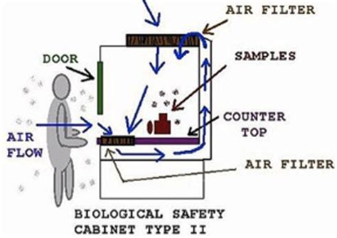 fume vs biological safety cabinet the of biological safety cabinets in research