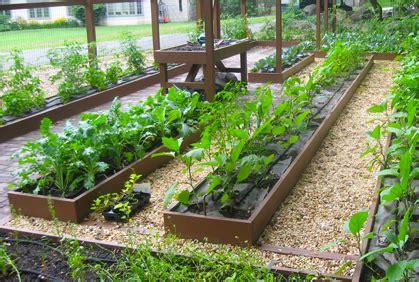 top vegetable garden ideas  beginners  pictures