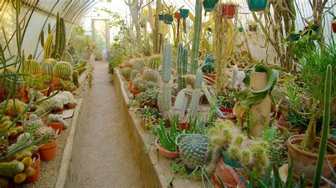 Moorten Botanical Garden Moorten Botanical Garden And Cactarium In Palm Springs California Expedia