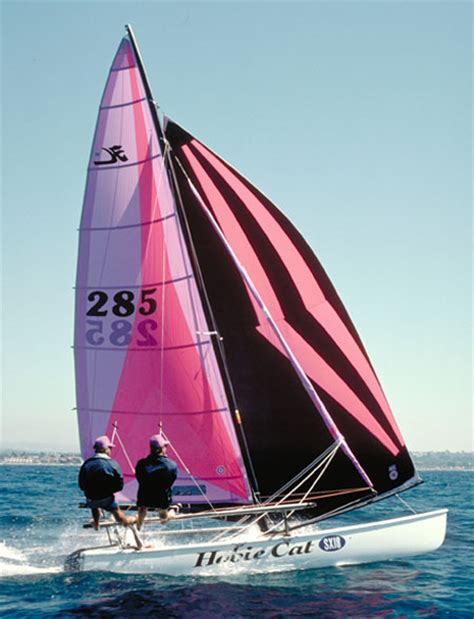Hibie Q hobie 18 wings images