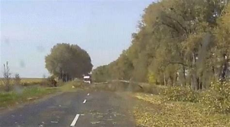 biography x imgur watch imgur viral video shows driver suffering instant