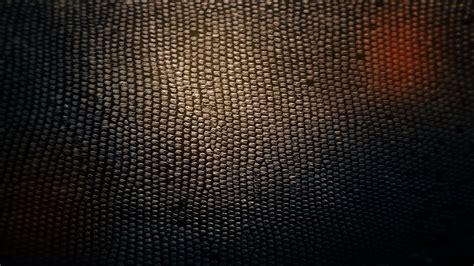 wallpapers snake skin wallpapers snake skin wallpaper 11666