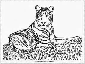 realistic animal coloring pages free realistic deer coloring pages