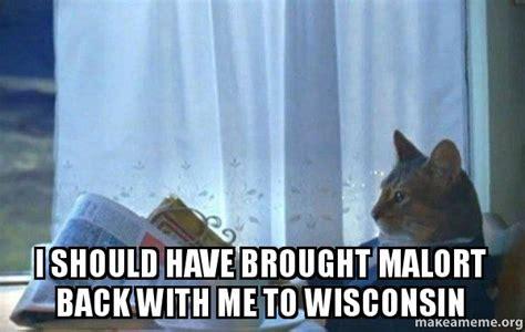 Sophisticated Cat Meme Generator - sophisticated cat meme