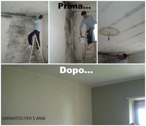 pittura per muro interno posso rifinire le pareti della cucina con la cera