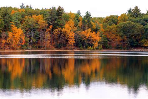 of walden walden pond autumn
