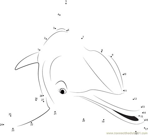 printable dot to dot dolphin dolphin close up dot to dot printable worksheet connect