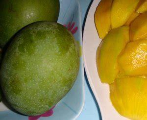 manfaat buah bacangpakel berbagi