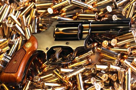pin by sifs india on best forensic ballistics expert