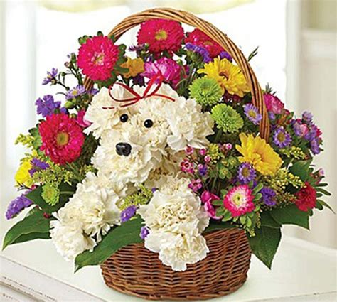 puppy flower 7 delightful flower arrangements for the 7 types of barkpost