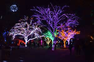 zoo of lights where to see lights in 2015 page 3