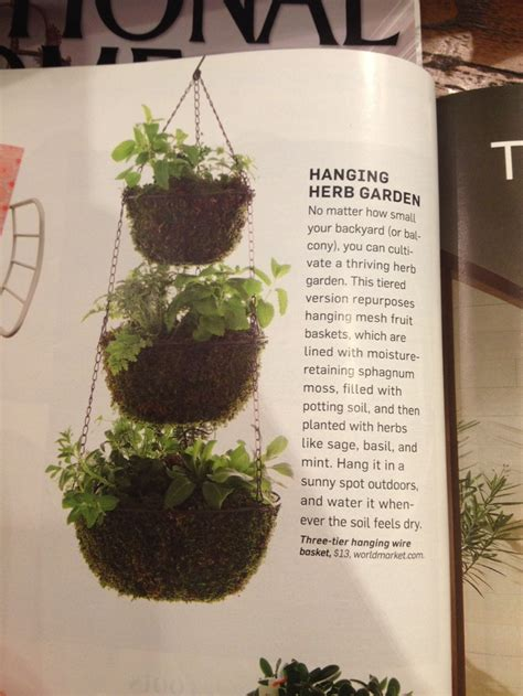 diy hanging herb garden 1000 images about our family herbs garden on pinterest