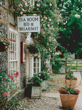 tea houses near me 17 best images about she loves on pinterest bloom