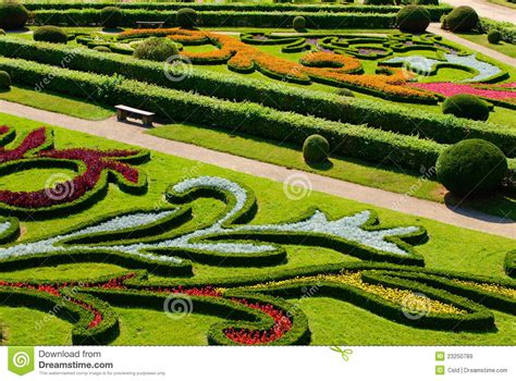 garten zierpflanze ornamental garden royalty free stock images image 23250789