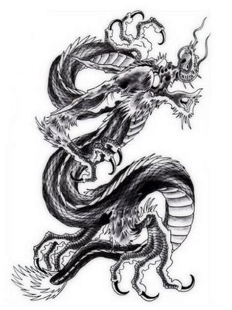 dragon directory japanese dragon tattoo