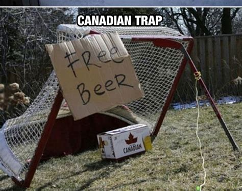 Funny Canadian Memes - the 25 best canada memes about the world s nicest country