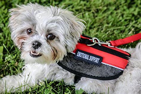 best emotional support dogs liopard light weight harness for service dogs emotional support dogs