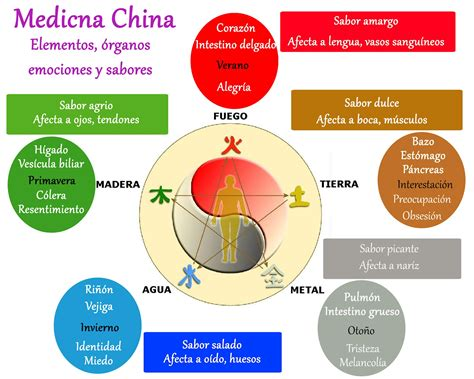 medicina tradicional china para 8415870809 relaci 243 n 243 rgano emoci 243 n seg 250 n la medicina china terapias naturales en madrid