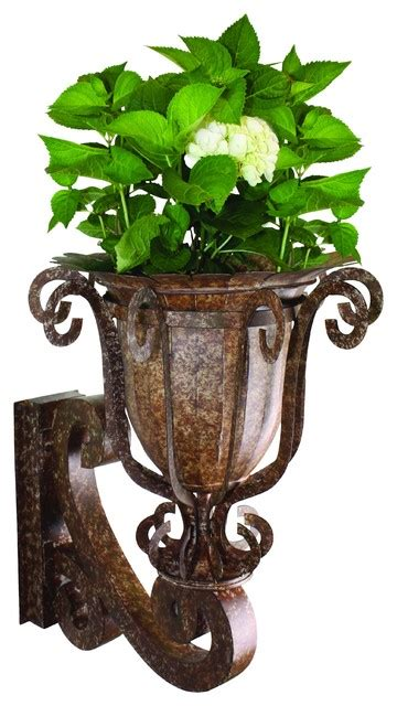 Iron Wall Planters by Iron And Tole Wall Planter Traditional Outdoor Pots And Planters By Dr Livingstone I Presume