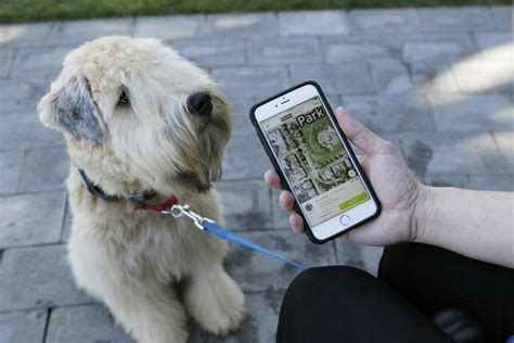 pet technologies pet tech offers to keep animals safe healthy and