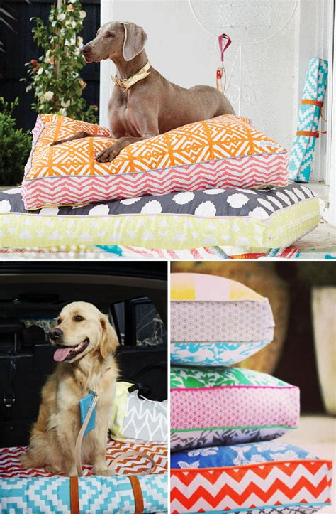 dog couch australia colorful dog beds from australian label pooccio style