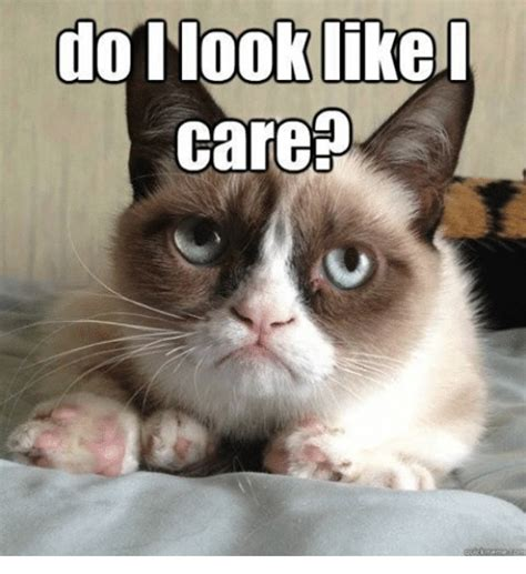 Do I Care Meme - 25 best memes about memes memes meme generator