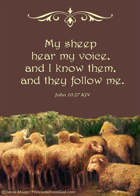 he knows you following our one by one savior books sheep jesus said and jesus on