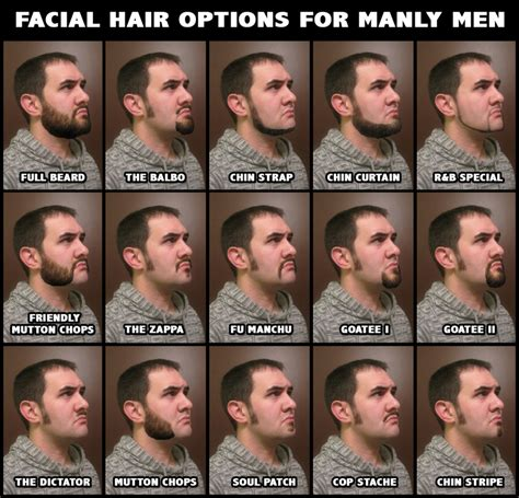 what are the different types of hair with pictures different facial hair styles that don t look completely