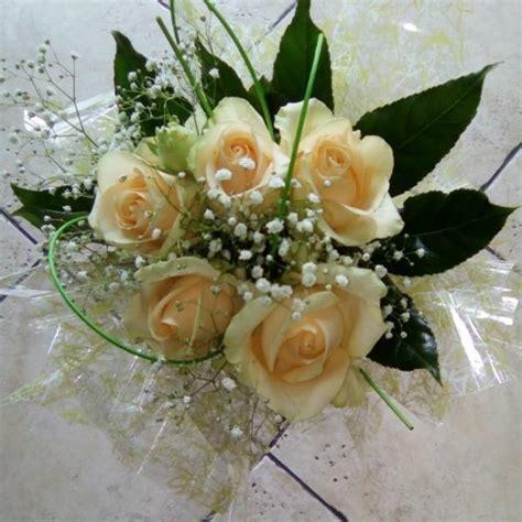 ciro fiore piante e fiori l orchidea di ciro scognamiglio home