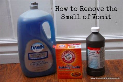 How To Remove Vomit Smell From how to remove the vomit smell from anything other the o